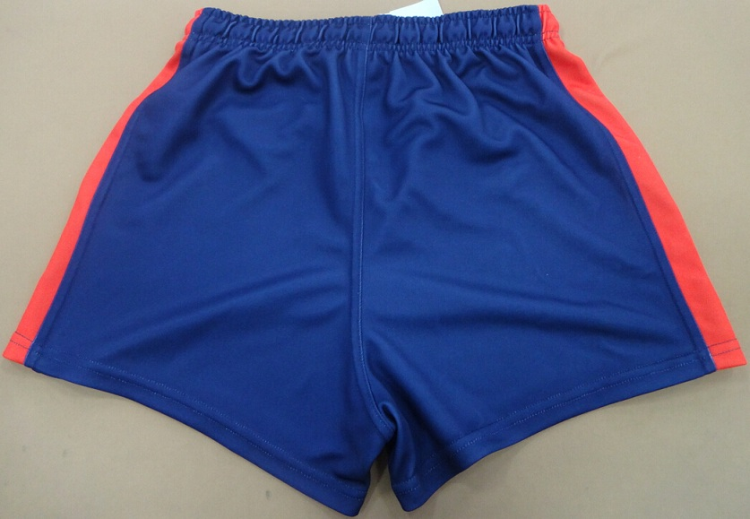 Broncos Shorts Back